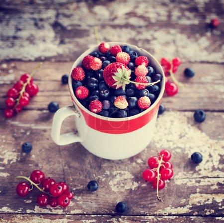 Tasty summer berries