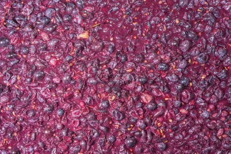 Process of a fermentation of wine, top view of red grapes