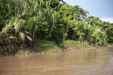 Photo pour Une vue sur la rivière Amazone dans la province de Tambopa par une journée ensoleillée - image libre de droit