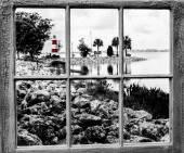 Window Look
