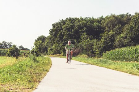 Photo for Active Senior Man Cycling Outdoors in Summer Nature. - Royalty Free Image