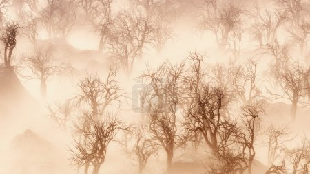 Bare winter trees in thick layer of mist.