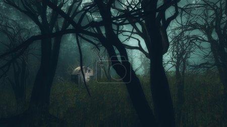 creepy winter forest.