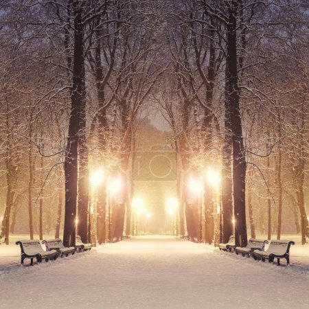 Photo for Footpath in a fabulous winter city park - Royalty Free Image