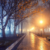 people in autumn city park at night