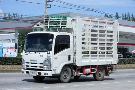 Private Isuzu Cargo truck