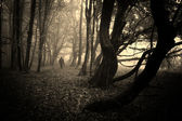 Ghost in mysterious dark forest with fog on Halloween