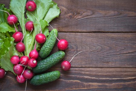 Photo for Lettuce cucumbers and radishes - ingredients for a salad. Free space for text - Royalty Free Image