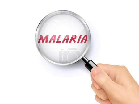 malaria showing through magnifying glass