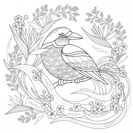 Graceful bird coloring page