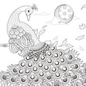 Graceful peacock coloring page