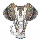 Půvabná slon