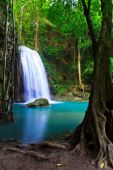 Beautiful waterfall in forest in Thailand