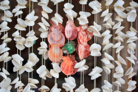 Sea shells product on ropes