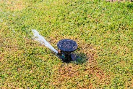Sprinkler system in a farm field grass