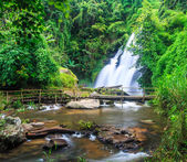 Pha Dok Xu waterfall