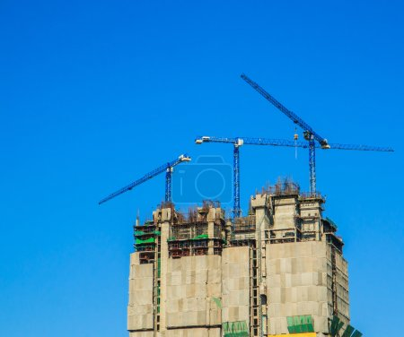 Construction site and cranes