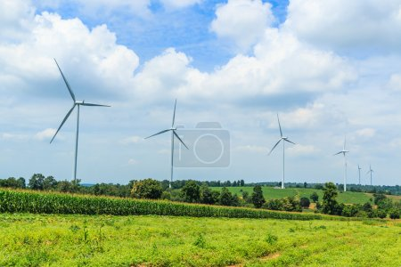Wind turbines and nature