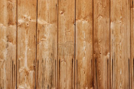 Old wooden texture. wooden boards with nails spoiled