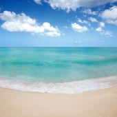 Sea shore view, horinzontal view