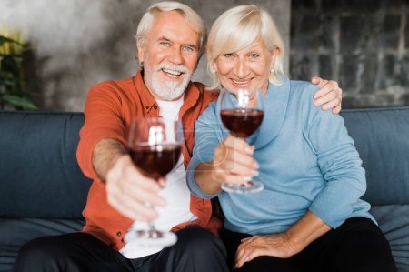 Photo pour Conjoints âgés caucasiens joyeux assis à la maison sur le canapé tenant des lunettes avec du vin regardant la caméra et souriant - image libre de droit
