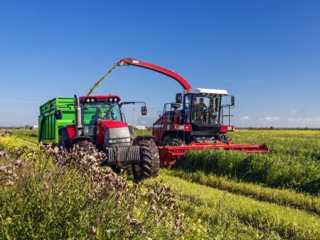agricultural machinery, preparation of forages, harvesting. forage for cows.