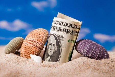 Sea  shells  and dollar money on the beach sand