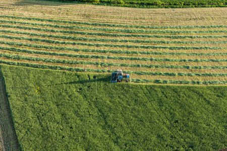 Photo for Aerial view of harvest fields with combine in Poland - Royalty Free Image