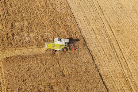Photo for Aerial view of the combine on harvest field in Poland. - Royalty Free Image