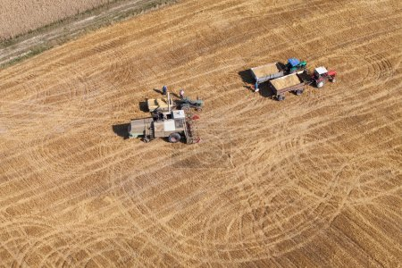 Photo for Aerial view of combine on the harvest field in Poland - Royalty Free Image