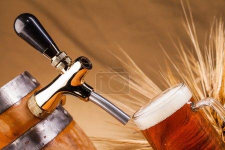 Стакан светлого пива и шипы ячменя