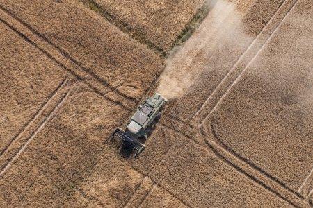 Combine working on harvest field