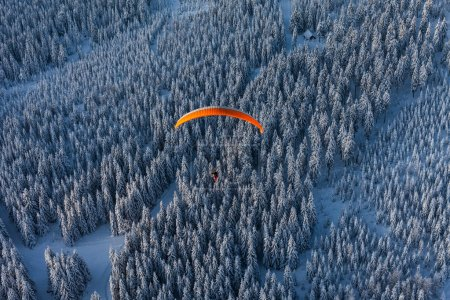 aerial view of  paramotor over the forest in winter