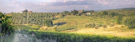 Panorama d'une Toscane landscape3 coucher de soleil