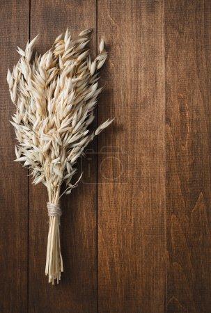 ears of oat on wood