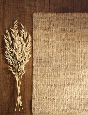 Ears of oat and burlap hessian sacking