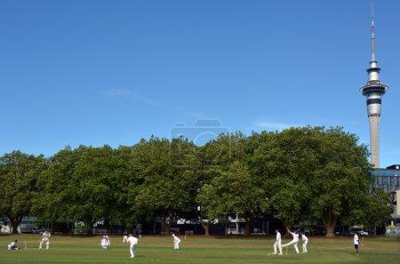 Men play Cricket in Victoria