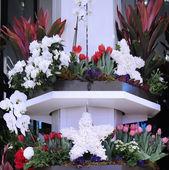 Amerika krásné téma květinová výzdoba během slavné Macy roční Flower Show v Macy Herald Square
