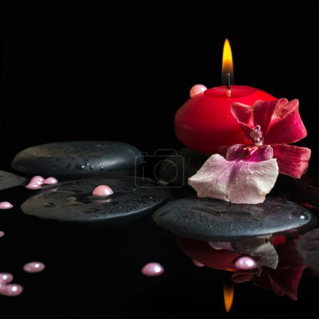 spa still life of red candle, zen stones with drops, orchid camb