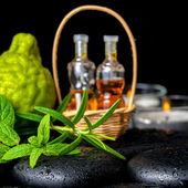 Aromatické lázně lahví esenciálního oleje v košíku, čerstvá máta, ros