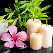 spa still life of pink hibiscus flower, twig bamboo, thai herbal