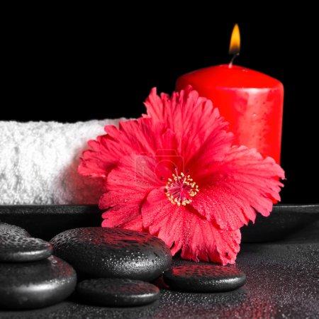 Photo pour Concept spa beauté de la fleur d'hibiscus avec rosée, bougies rouges et blanc serviette roulée à égalité avec ruban sur les pierres zen, closeup - image libre de droit
