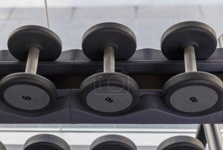 Dumbbell set. Many metal dumbbells on rack in spor...