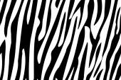 Bezešvé vzor zebra pruhy