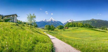 Photo pour Paysage estival idyllique dans les Alpes, Parc national Berchtesgadener Land, Bavière, Allemagne . - image libre de droit