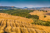 Tuscany landscape with rolling hills at sunset, Val d'Orcia, Italy