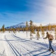 Panoramic view of male person cross-country skiing...