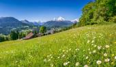 Beautiful mountain landscape in the Alps with fresh green mountain pastures in springtime
