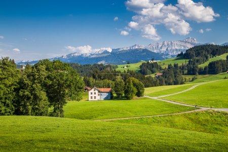 Photo pour Paysage idyllique dans les Alpes avec prairies verdoyantes et célèbre sommet de Saentis en arrière-plan, Appenzellerland, Suisse - image libre de droit