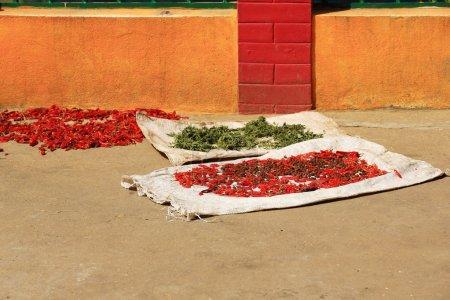 Raw food sundrying. Thrangu Tashi Yangtse Monastery-Nepal. 1002